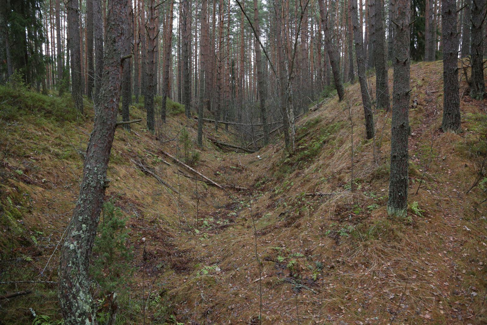 Вне зоны по Карельскому перешейку 3